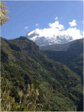 A view of Kilimanjaro's summit from the Umbwe Route, Climb Kilimanjaro